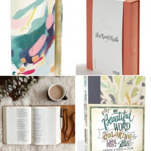 several different Bibles for post how to choose the perfect bible